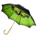 Зонт с изображением киви на внутренней части